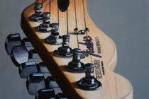 Australian Fender V . (c) Andre Beaulieu . 2016